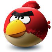 angry-bird-170
