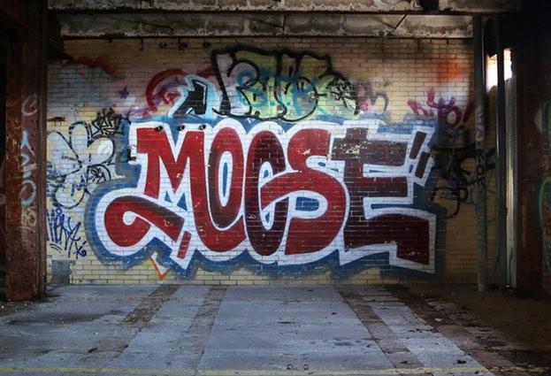 moose-623x425
