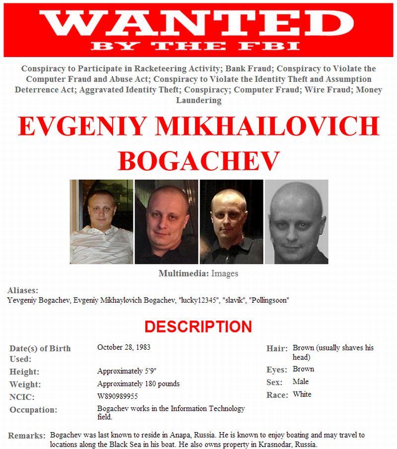 zeus_bogachev